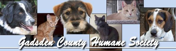 Make donations to Gadsden County Human Society